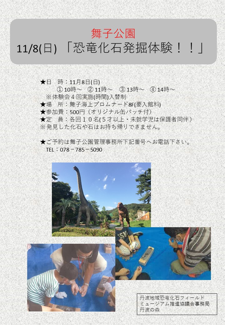 11/8(日)「恐竜化石発掘体験!!」のアイキャッチ
